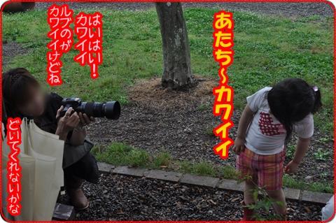 2011629-38.jpg