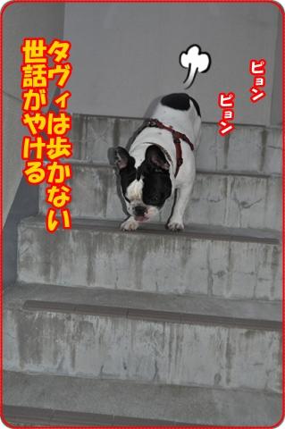 2011718-6.jpg