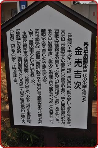 2011817-6.jpg