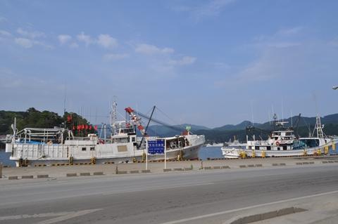 2011819-12.jpg