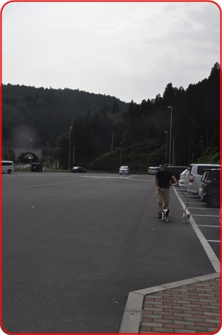 2011819-3.jpg