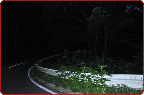 2011825-34.jpg