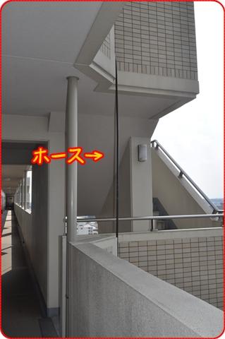 2011918-0000.jpg