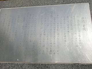 t-074.jpg