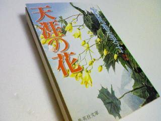 tengai_convert_20090914221917.jpg