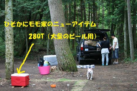 2009080814.jpg