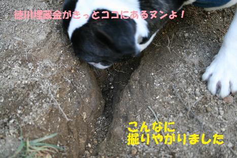 2009092816.jpg