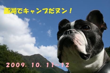 2009101174.jpg