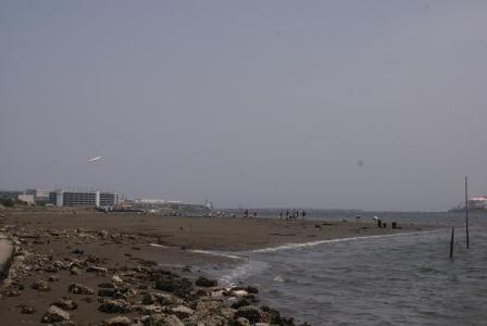 海岸と飛行機