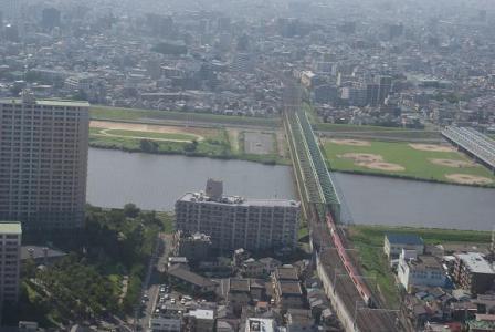 江戸川を渡る成田エクスプレス