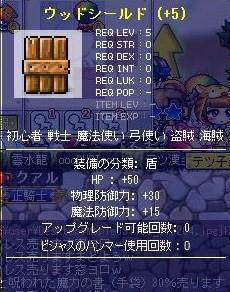 113HP盾
