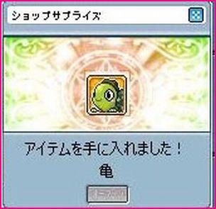 1218えw亀