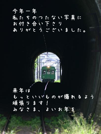 aogaeru10.jpg