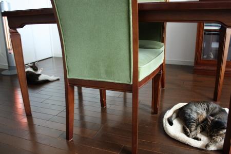 床暖房も好き