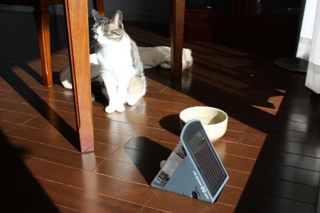 太陽光充電中