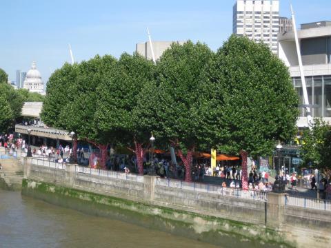 Dot obsession Thames