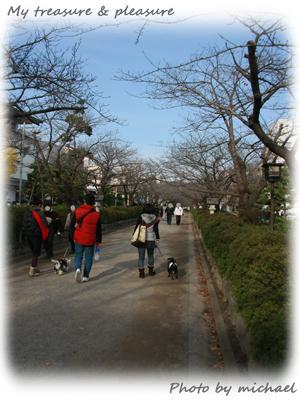 20101205_15.jpg