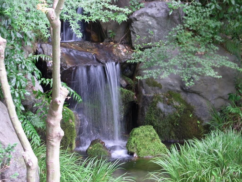 泉横の滝。
