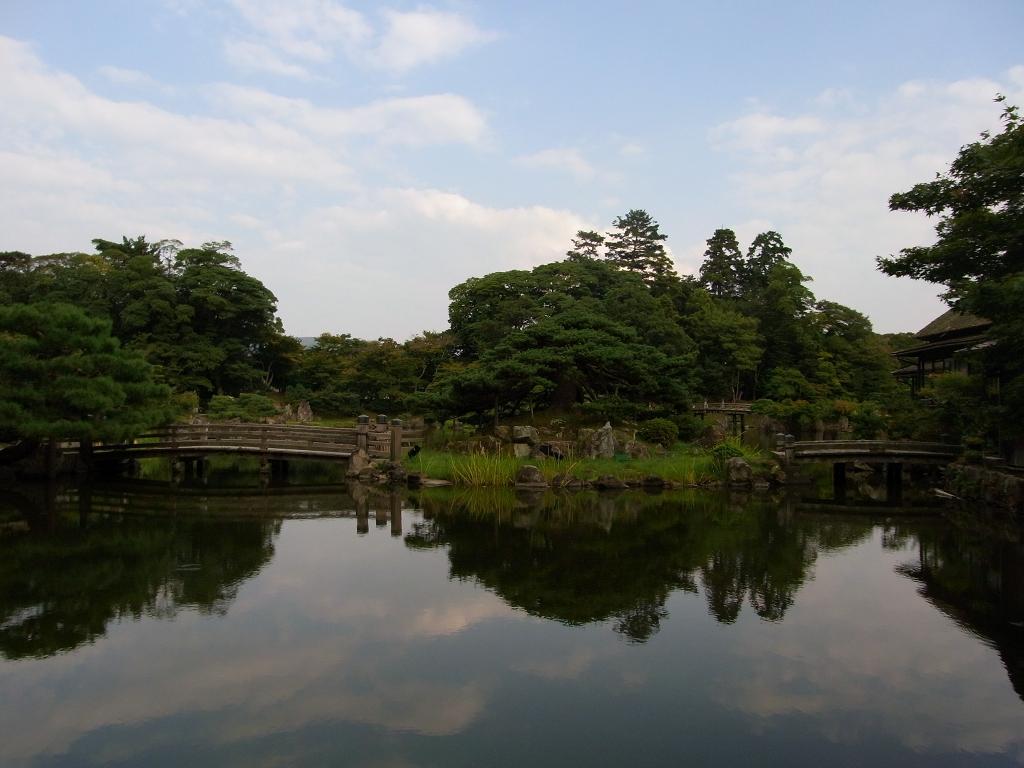 池に映る雲。