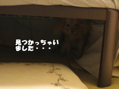 kagamimoti3.jpg