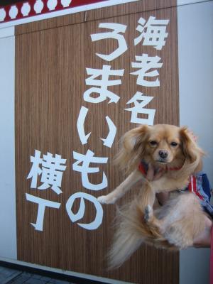 miyagase5.jpg