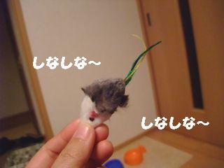 2009_11020569.jpg