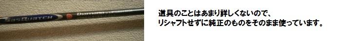 024_convert_20100509001257.jpg