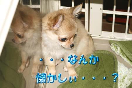 16_20110811111337.jpg