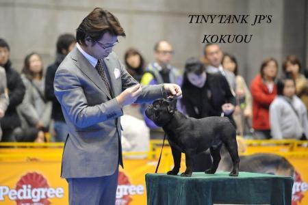 東京インター黒王