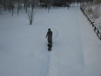 1月3日の散歩