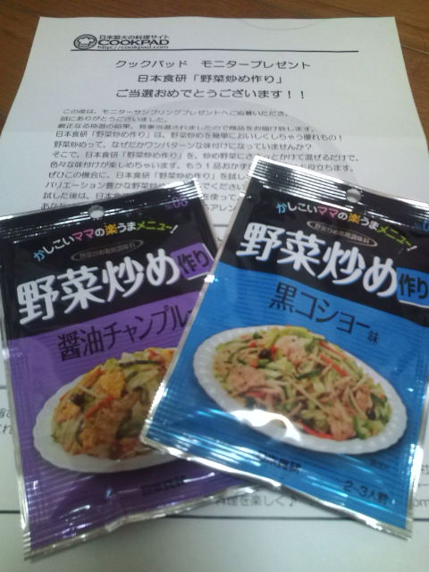 野菜炒めモニター