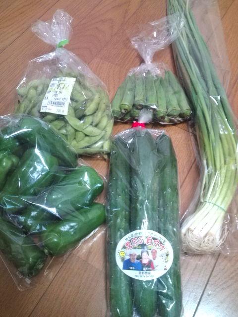 青野菜を並べてみました