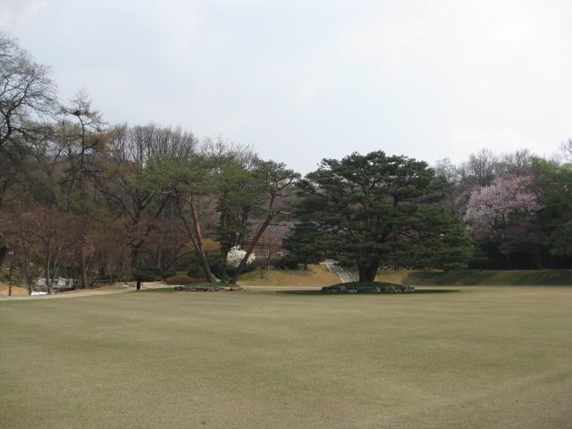 クルル/H22 4/14 ~ 韓国の旅 285