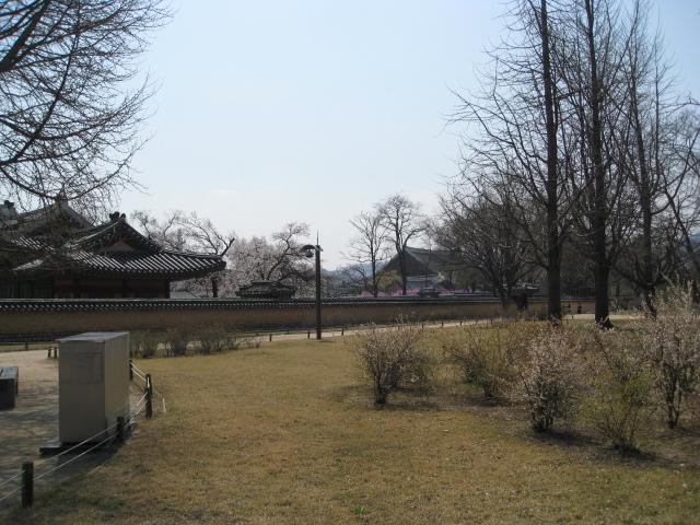 クルル/H22 4/14 ~ 韓国の旅 356