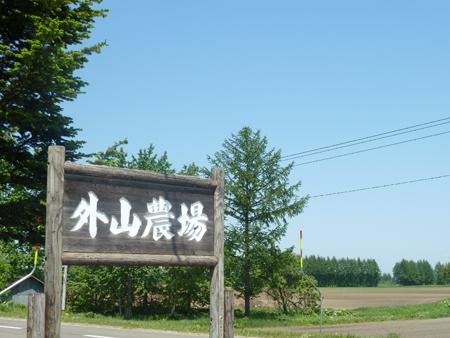 P1000857.jpg