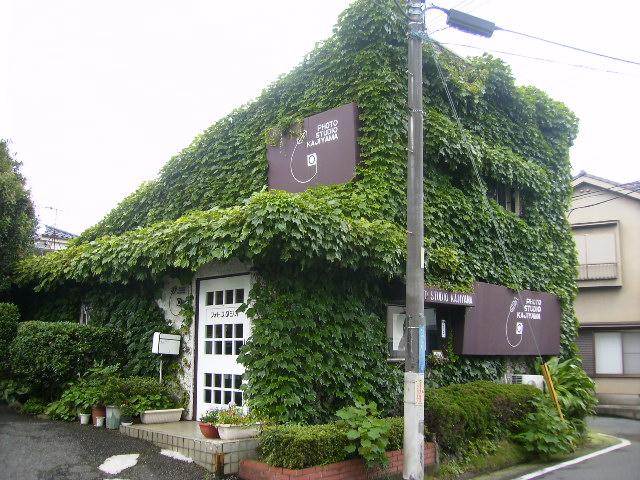 蔦の家15