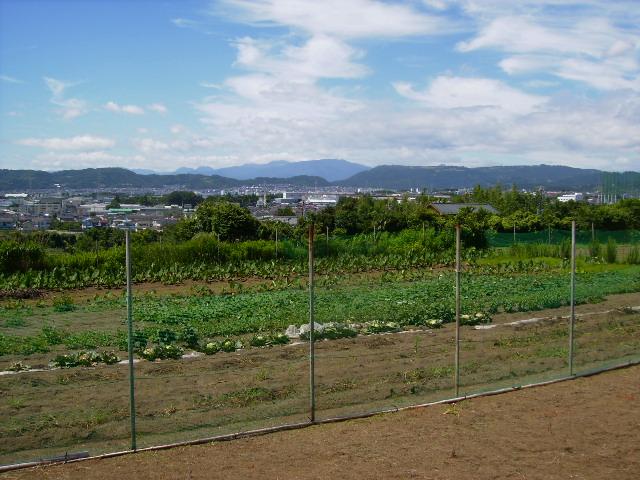 箱根方面11