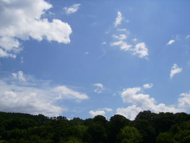 夏の雲47