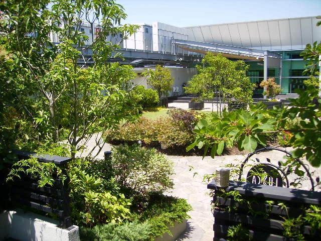 夏の庭園134