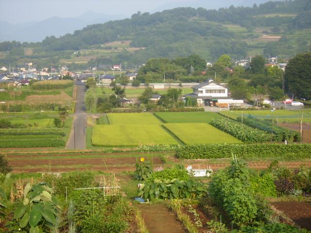 田原盆地24