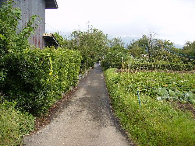 秋の田舎道116