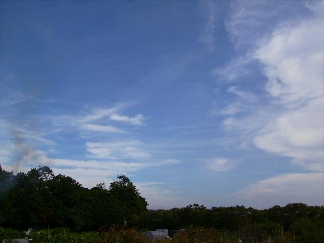 秋の青空05