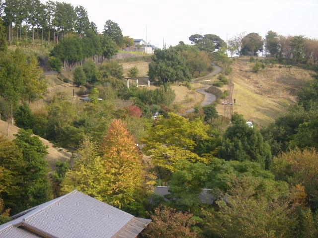 秋の日本庭園を望む89