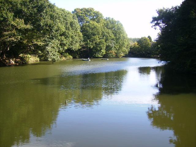 秋の湖畔62
