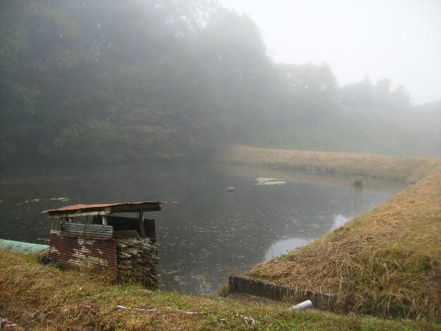 朝霧のため池14