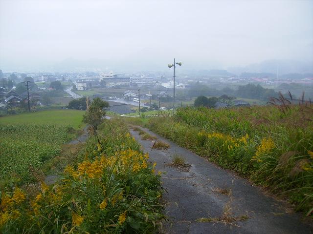小雨の農道58