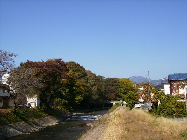 秋の金目川03