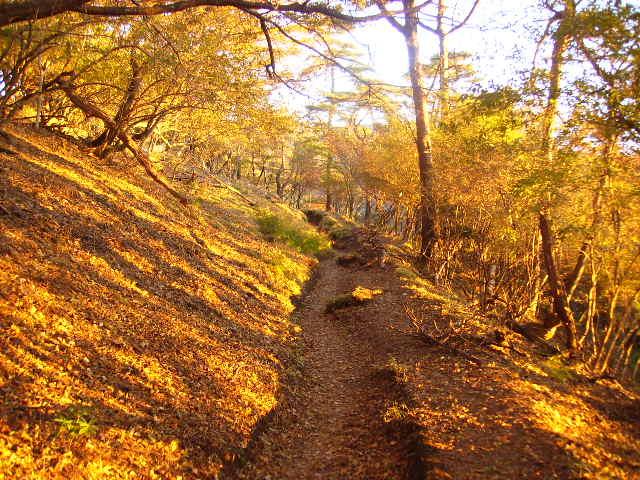 朝日の登山道84