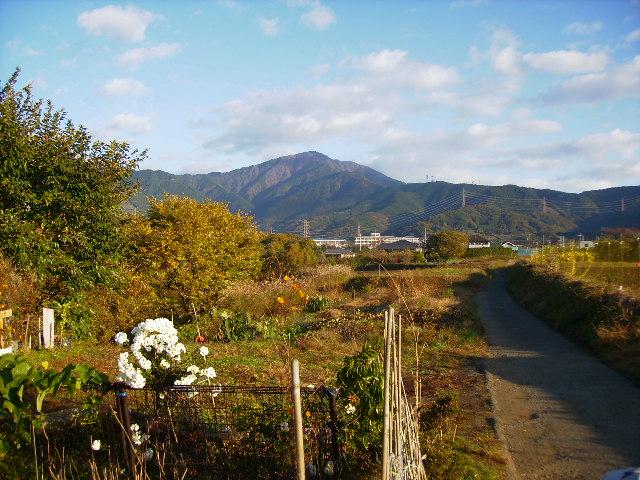 大山と坂本古道34
