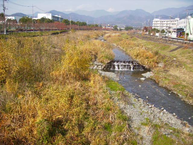 晩秋の水無川22